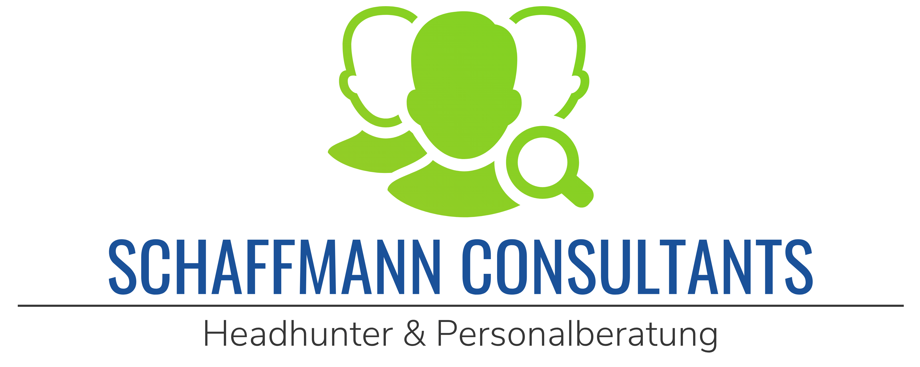 SCHAFFMANN CONSULTANTS